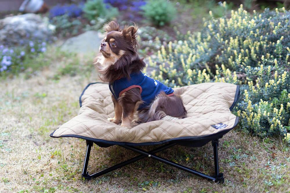 """愛犬の特等席になる""""ドッグコット""""に新色登場。"""